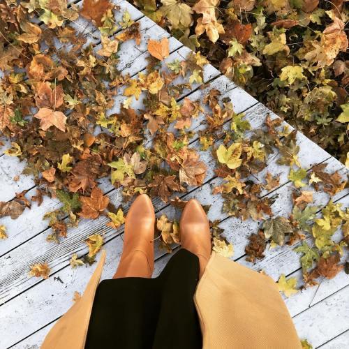 armocromia autunno palette tappeto foglie