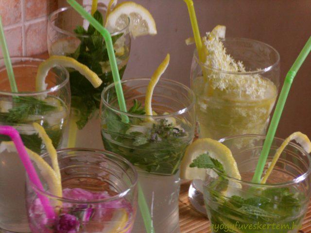 Vegyes ízesítésű limonádék, limonádévariációk, limonádé variációk