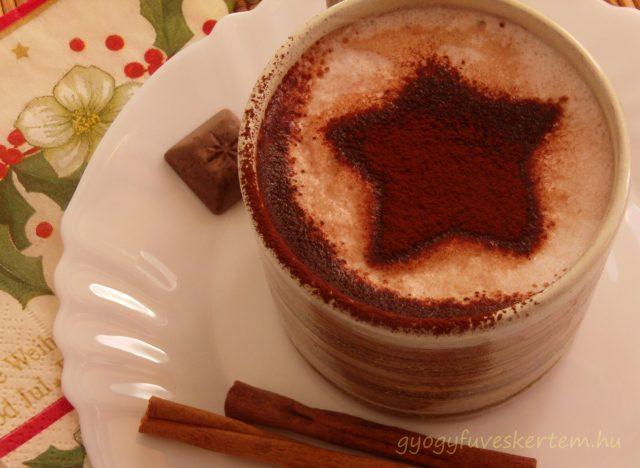 Békebeli habos kakaó karácsonyi fűszerekkel, melegítő, fahéj, szegfőszeg, mézeskalács, gyógyfüves kertem