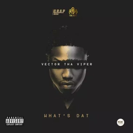 Vector --  What's That Cover Art