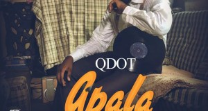 Qdot -- Apala New Skool Cover Art