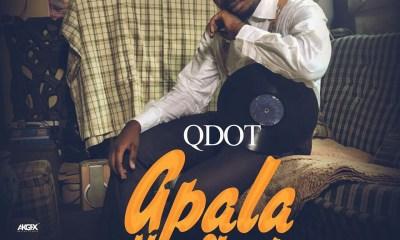 Qdot -- Apala New Skool Cover Art