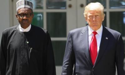 Donald Trump Speaks with Buhari