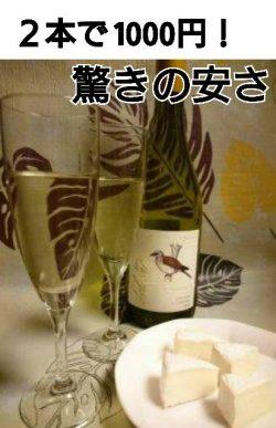 白ワインキャッチ画像