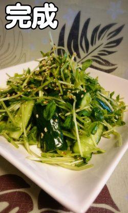 豆苗ときゅうりのおつまみサラダ