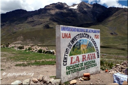 Between Chivay and Puno (2)