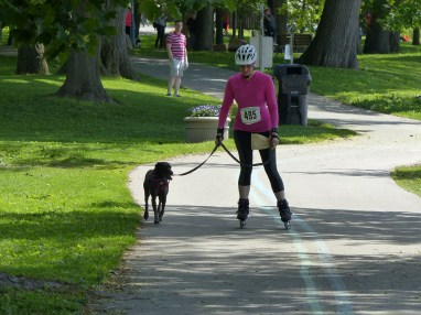 Woof fit 2015 250