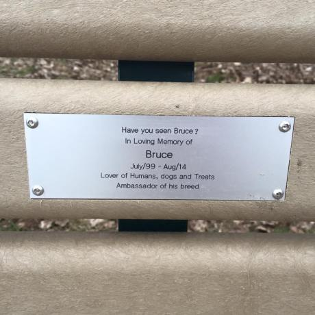 Bruce's memorial bench at Cherry Beach dog park www.gypsycanine.com
