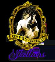 Gypsy Gold Stallions