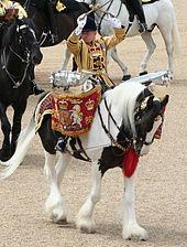Drum Horse