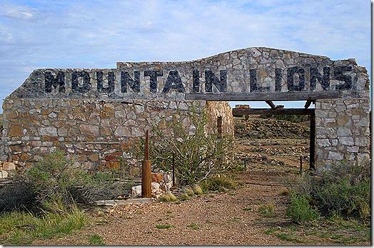 Two Guns mountain lion