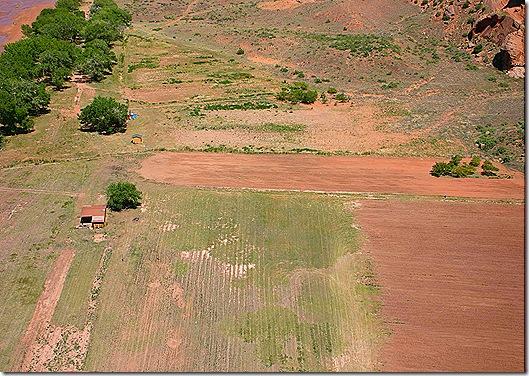 Navajo farm