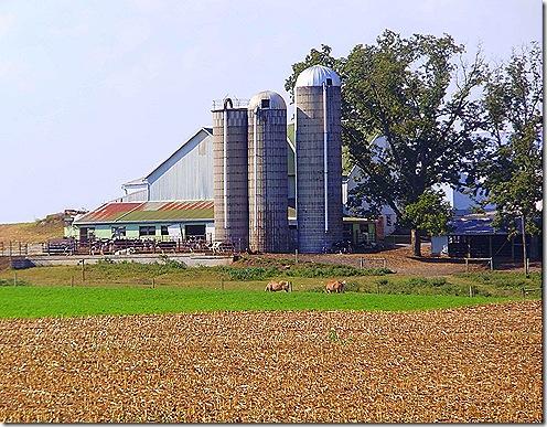Amish farm best