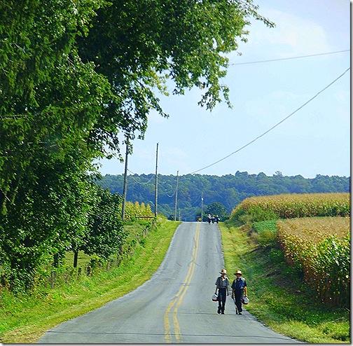 Amish schoolkids 4