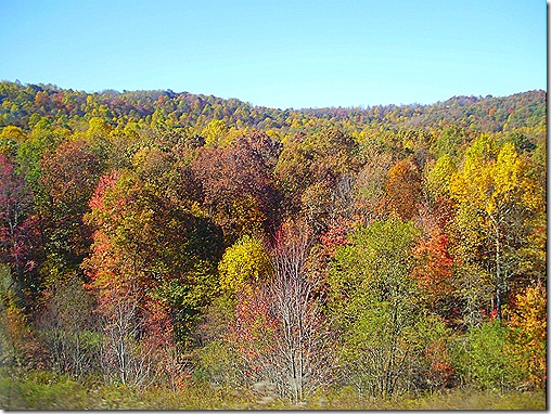 West Virginia fall colors