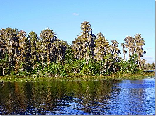 TTN Orlando lake