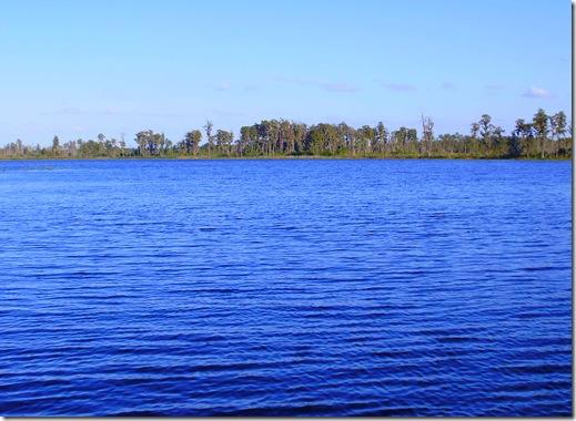 TTN Orlando lake view