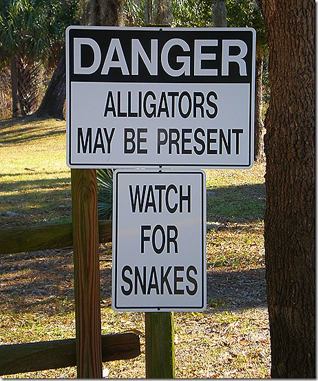 Alligator Snake sign