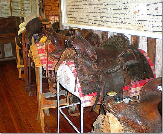 Saddles 2