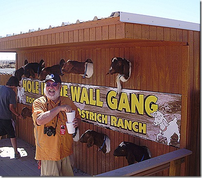 Greg goats