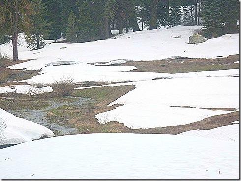 Snowey creek