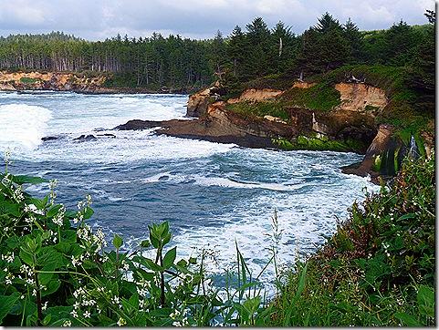 Depot Bay coastline 5