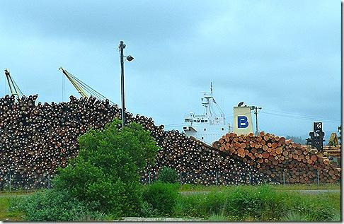 Logs at Coos Bay port