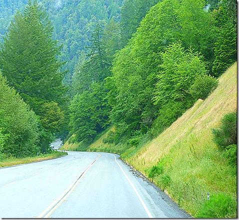 US 101 downhill
