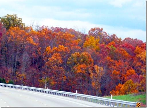 Kentucky fall colors