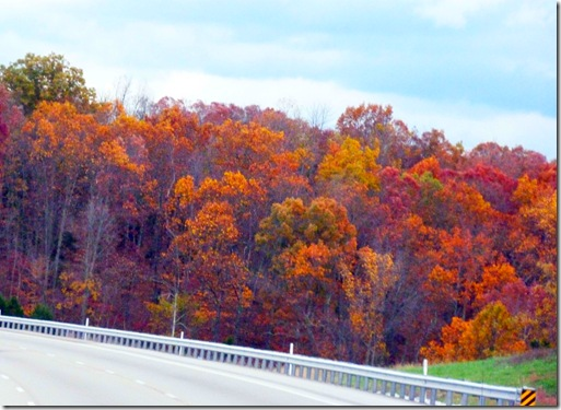Kentucky fall colors