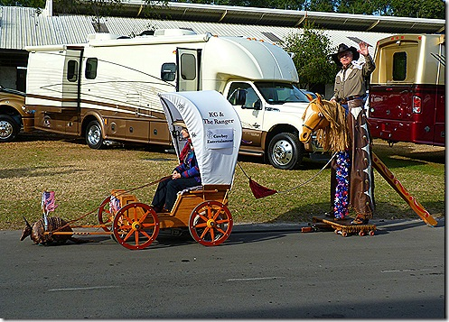 Armadillo covered wagon