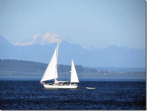 Sailboat and mountain 2