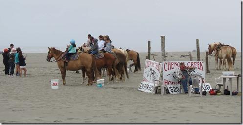 Beach horse rental