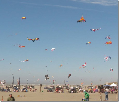 Kite festival Wednesday