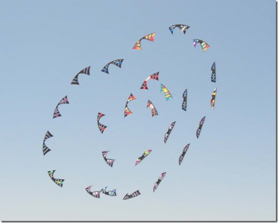 Kites in formation 6