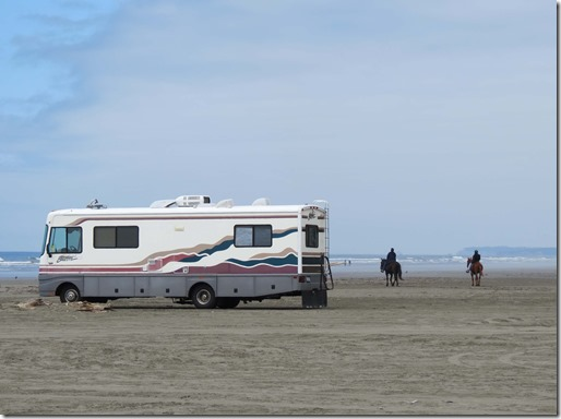 RV and horses