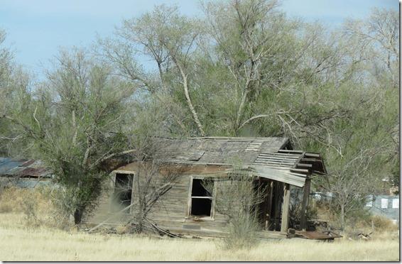 Cabin ruin
