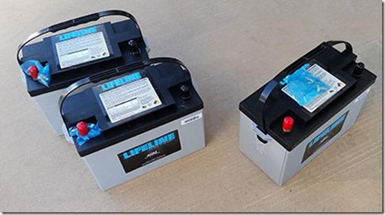 LIfeline bateries small