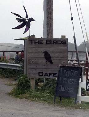 Birds Cafe small