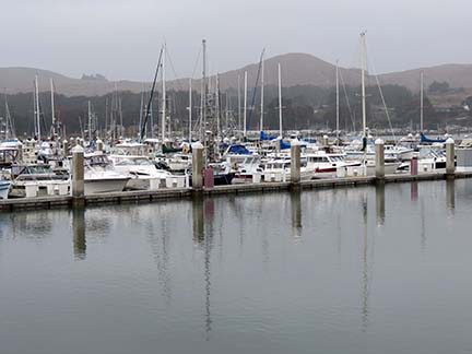 Bodega Bay Marina small