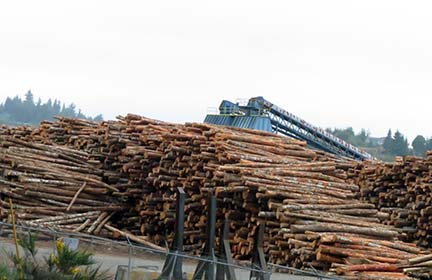 Log yard Coos Bay small