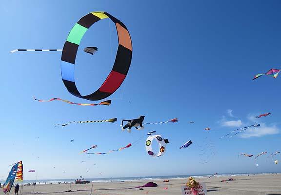 Circle kite small