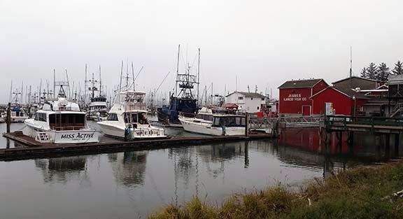 Ilwaco Marina small