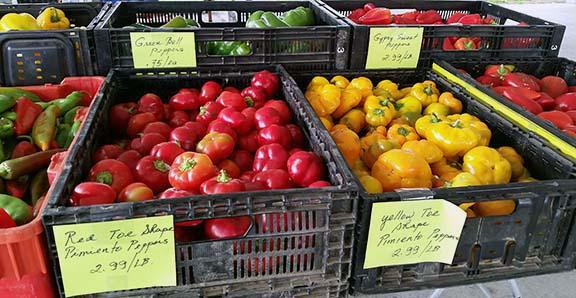 Ilwaco farmers market produce small