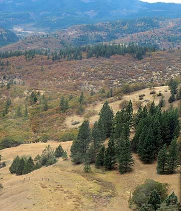 Oregon scenery small