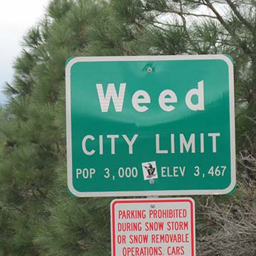 Weed sign