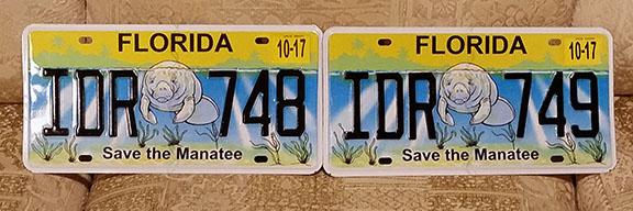 Florida plates small