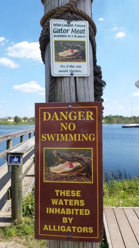 Gator warning sign