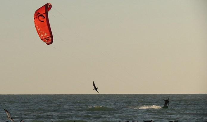 Windsurfer small