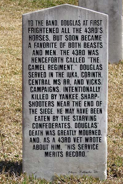 Camel headstone 2